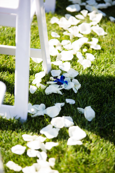 White petals on grass with blue bom orchids, Summer Wedding
