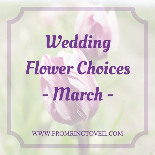 Wedding Flower Choices - March, tulips, wedding planning, wedding podcast