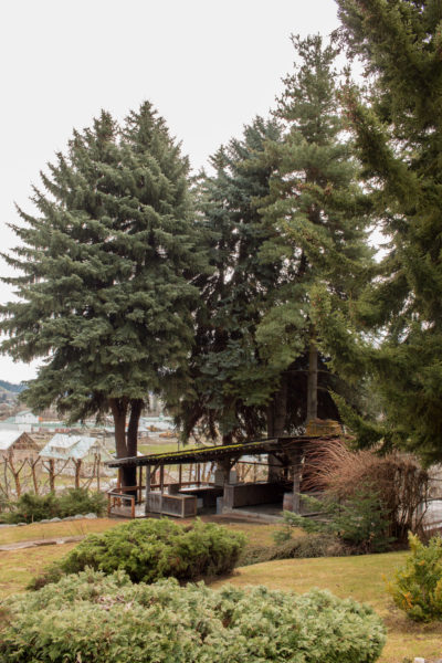 Outdoor rustic bar with tall trees at Beecher Hill House, Peshastin, Washington